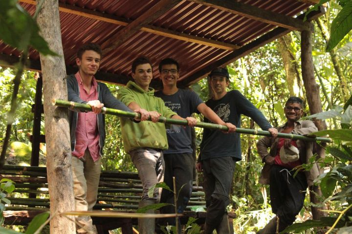 Volunteers to work for forest protection Manu Peru